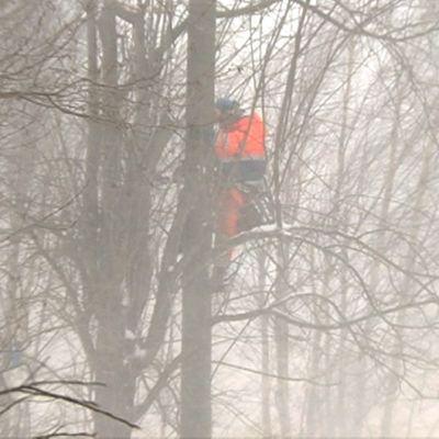 Työmies kiipeämässä sähkötolppaan lumisateessa.