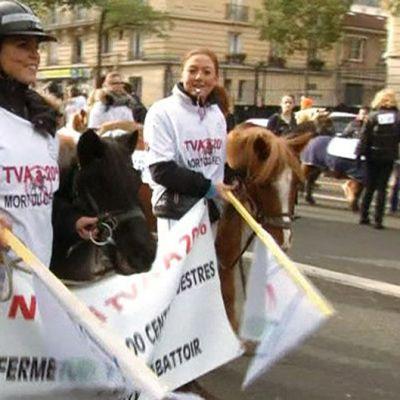Mielenosoittajat vastustavat Ranskan hallituksen aikeita nostaa ratsastustuntien arvonlisäveroa.