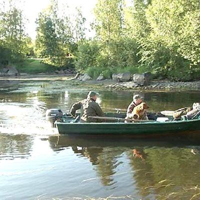 Mies ja poika ja koira lähdössä veneellä metsästämään sorsia.