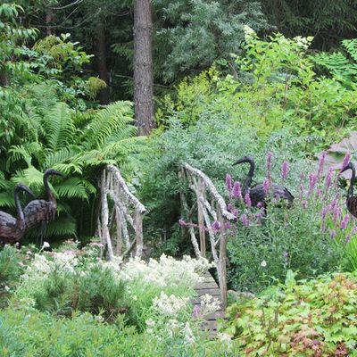 Puutarhassa on lintuja ja puinen silta vihreyden keskellä
