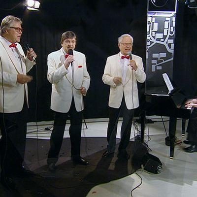 Four Cats -yhtye esiintymässä.