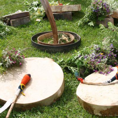 Shamaanirumpuja nurmikolla