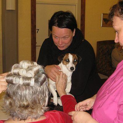 Hoivakodin asiakkaalle laitetaan rullat päähän ja koirakin on mukana hoitotilanteessa