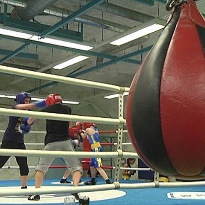 Nyrkkeilyharjoitukset Nääshallissa. Etualalla nyrkkeilypallo.