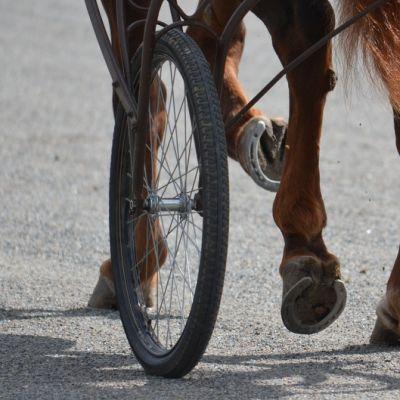 Hevosen jalat ja kärryn toinen pyörä