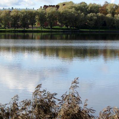 Vanajaveden ranta. Taustalla puiden takana Hämeenlinnan Linnankasarmi.