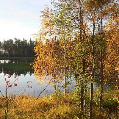 Aamuaurinko ruska-aikaan Rovaniemen Misijoella