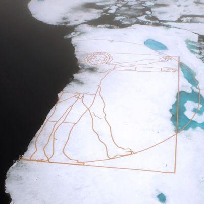 Suuri piirros puoliksi sulaneena jäälautalla.