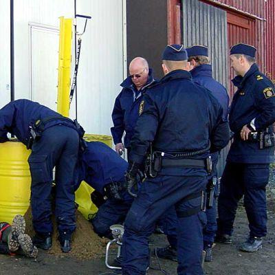 Poliisi irroitti tiistaina Greenpeace-aktivisteja perunavaraston ovesta Ruotsin Alavojakkalassa.
