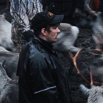 Kuva Salla - selling the silence -dokumenttielokuvasta.