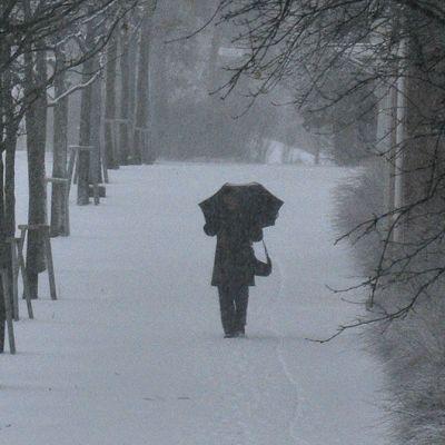 Henkilö sateenvarjon kanssa lumisateessa.