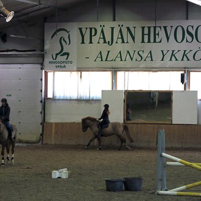 Esteratsastajia harjoittelemassa Ypäjän Hevosopiston ratsastusmaneesissa