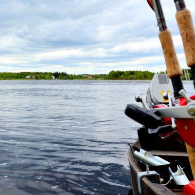 Kalastusvälineitä.