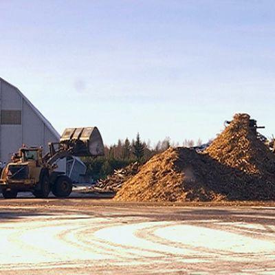 Kestopuun kierrätysalue Tuuloksessa Hämeenlinnassa