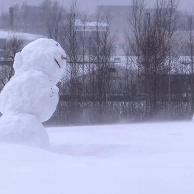 lumiukot myrskyssä ja tuiskussa