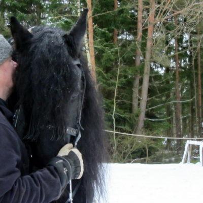 Jaakko Nuotio kouluttaa Aletheia hevosta historialliseksi ratsuksi.