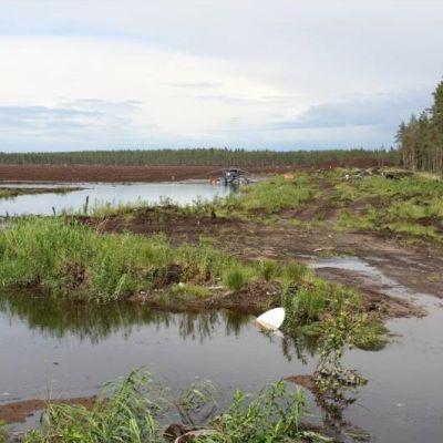 Vesi valuu turpeennostosuon tulvapadon yli ukkoskuuron jälkeen. Kuva on osa SLL:n keräämää aineistoa.