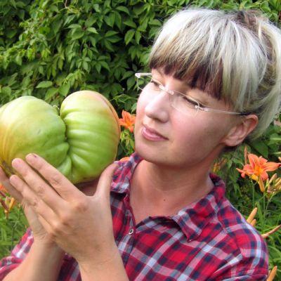 Tuija Osmala ja 1 796 gramman SE-tomaatti.