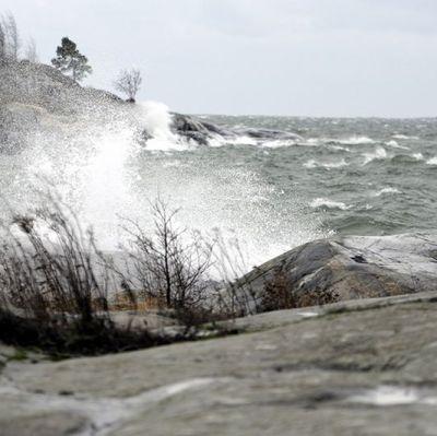 Storm till havs