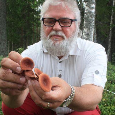 Kauko Salo aikoo tehdä sikurirouskusta seuraavan sienibuumin.