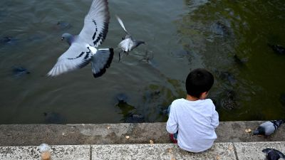Ett barn matar duvor i parken Retiro i Madrid 26.5.2020