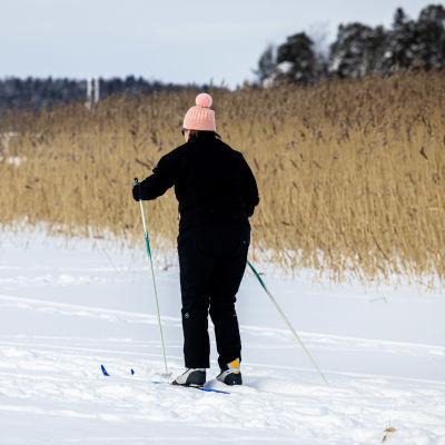 Henkilö hiihtämässä meren jäällä.