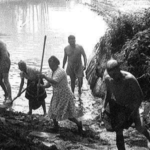 Amerikansuomalainen Erosen perhe uima-altaan teossa (1947).
