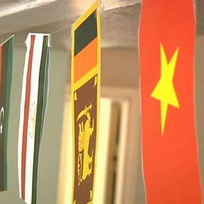 Eri maiden lippuja