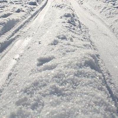 Hiihtolatua puhtaassa lumessa