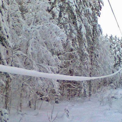 20 kV johdin 2 metrin korkeudella maasta Perangalla.