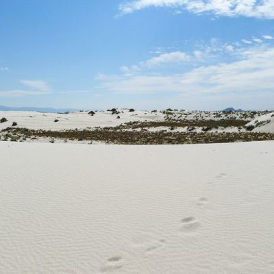 New Mexicon osavaltiossa sijaitseva White Sandsin aavikkoalue.