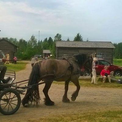 Wanhan ajan maatalousnäyttelyn vieraita vuonna 2014.