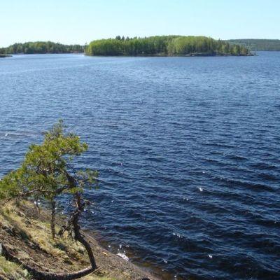 Luonteri on karu vesistö Mikkelin ja Puumalan välillä.