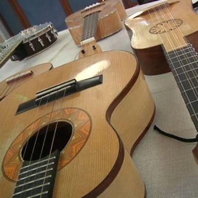 useita erilaisia ukulele-kitaroita