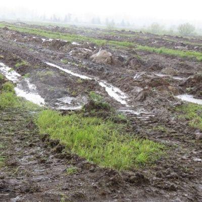 Veli-Matti Sunnarin pellot ovat läpimärät.