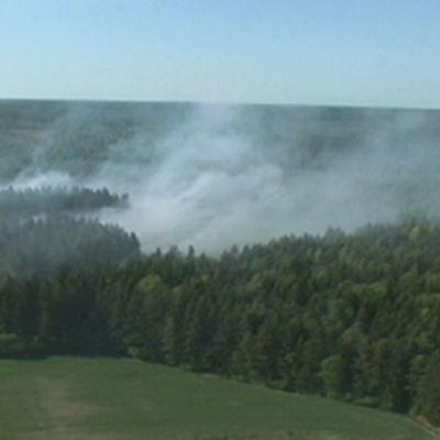 Vahdon maastopalossa metsää paloi noin 10 hehtaarin alueelta.