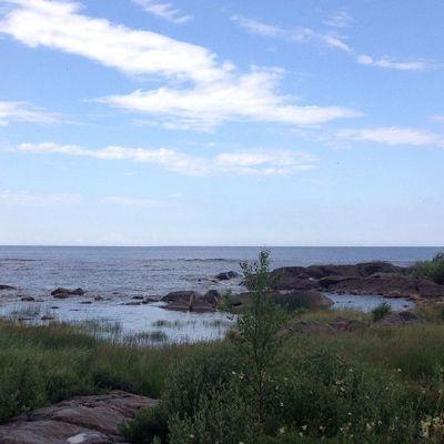 Hanhikiven ranta kesällä