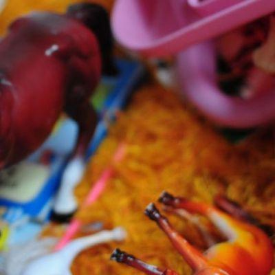 Lapsi leikkii leikkihevosella.