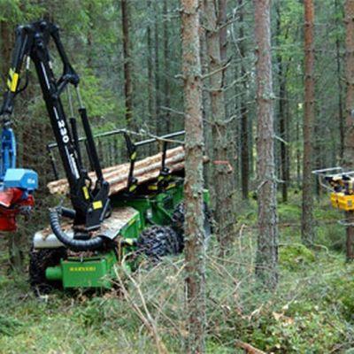 Metsuri ja metsäkone metsässä