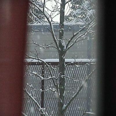 Vantaan vankilasta näyttäytyvä näkymä ulkomaailmaan.