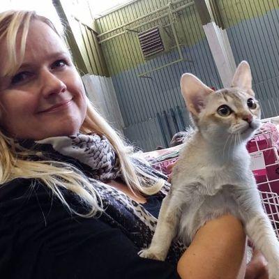 Kuvassa  Annika Hissa esittelee singapura-rotuista kissaansa Aadaa.