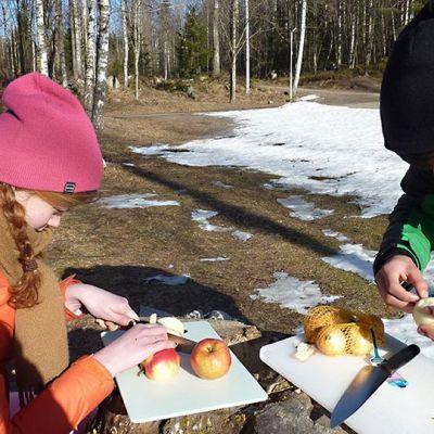 Tyttö ja poika pilkkovat omenaa ja sipulia.