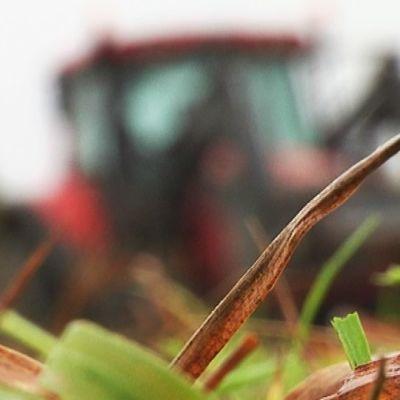 Heinänkorsia ja traktori pellolla.