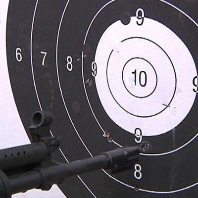 Maalitaulu ja kiväärin piippu