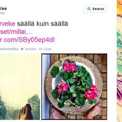 Ruutukaappaus Kati_Vee:n Twitter-sivusta.