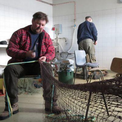 Ammattikalastaja Timo Matinlassi pauloittaa ahvenrysän aitaverkkoa Karsikon kalasatamassa Simossa. Taustalla selin Mauno Posti.