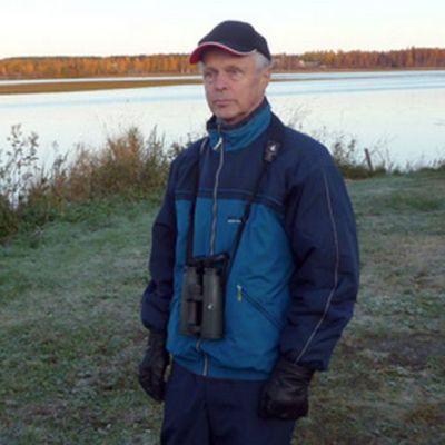 Kemiläinen lintuharrastaja Pentti Rauhala Tornion kaupunginlahdella.