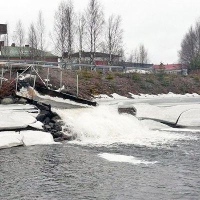 Pöyliöjärvi suoltaa pumppuaseman kautta vettä Kemijärveen