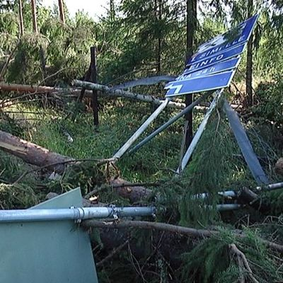 Myrskytuhoja Simpeleellä kesällä 2010.