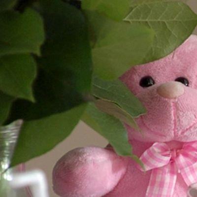 Vaaleanpunainen nallekarhu
